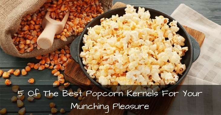 how to make popcorn without kernels